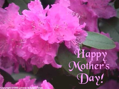 Mothers Day Wallpaper Farry Island S Day Wallpapers