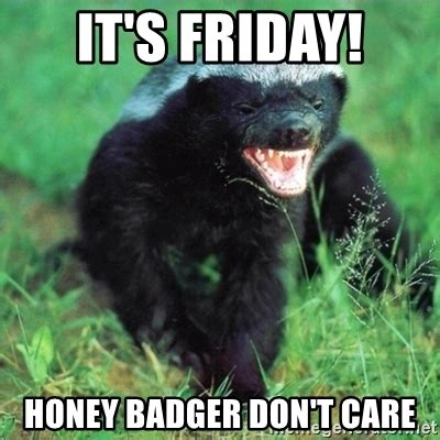 Honey Badger Don T Care Meme - it s friday honey badger don t care honey badger actual meme generator