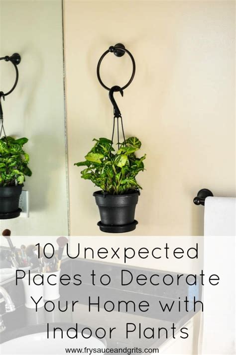 how to decorate home with plants 10 unexpected places to decorate your home with indoor