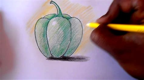 draw  shade capsicum step  step youtube