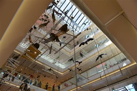 le di muse museo delle scienze trento notizie