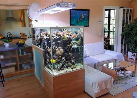 home fish l the drop reef aquarium of philippe grosjean reef