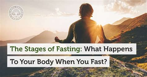 What Happens To Your When You Detox Your Liver by The Stages Of Fasting What Happens To Your When You