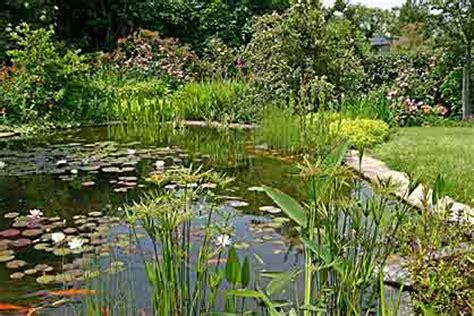 Creuser Un étang by Creuser Un Bassin D Eau Construire Un 233 Tang Id 233 E De