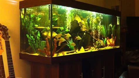 juwel 400 tropical tank hd