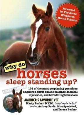 booktopia why do horses sleep standing up 101 of the most perplexing questions answered