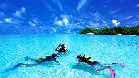 dive places top 30 best scuba diving locations