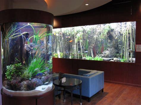 unique fish tanks ideas for your home decoration unique fish tanks ideas for your home decoration
