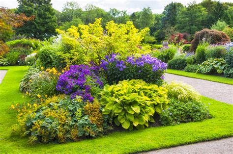 Shrub Garden Ideas 38 Clever Backyard Shrub Garden Ideas