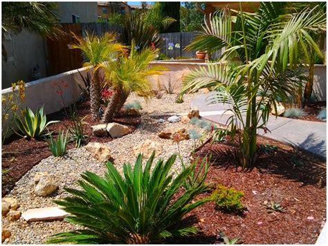 plants at home ideal desert landscaping plants at home bistrodre porch