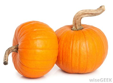 what are pie pumpkins with pictures