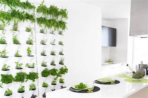 awesome indoor herb garden kit walmart herbs indoors