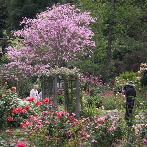 windsor gardens bardstown ky