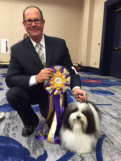 havanese club havanese club of america regional specialty thursday august 4 2016 canine