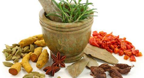 Herbal Hepatitis A B C Hebal Hepatitits Aman 4 obat herbal hepatitis b racikan sendiri cara sehat