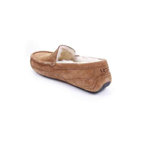 mens uggs ascot slippers ugg australia ascot mens slippers footwear