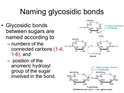 carbohydrates bonds carbohydrate structure