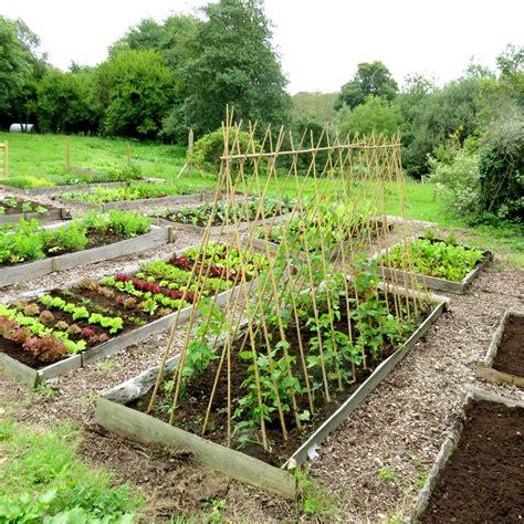Large Vegetable Patch Experience Gift Voucher Rocket Big Vegetable Garden