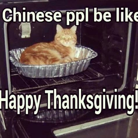 Best Thanksgiving Memes - 82 best images about lel chinese peeps on pinterest