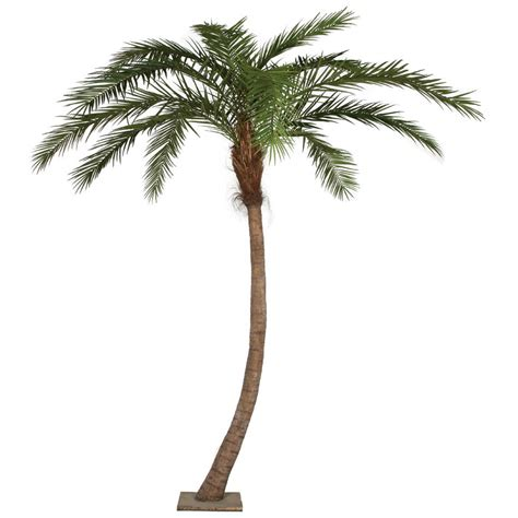 14 foot curved phoenix palm tree with synthetic trunk