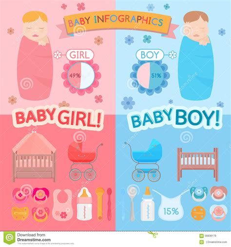 Baby Infographic Stock Vector Image Of Pacifier Icon 56836179 Baby Year Infographic Template