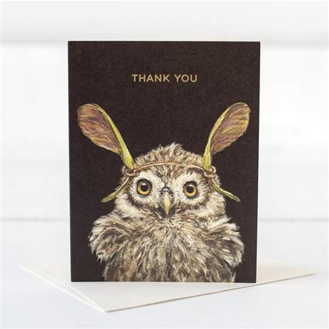 owl card hester cook