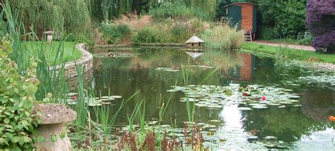 reed beds waste water treatment  cress water solutions