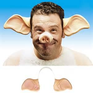 queues et serre t 234 tes oreilles de cochon