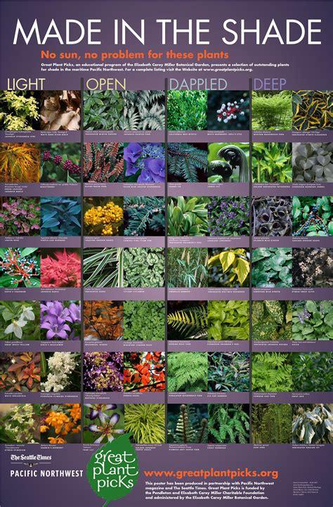 Flowers For The Shade Garden Shade Plants For The Pacific Northwest Seattle Gardening Greatplantpicks Gardening