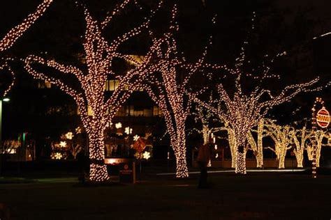 dallas downtown city lights festival things to do thanksgiving week in houston