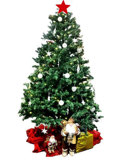 kostenloses foto weihnachtsbaum lichterbaum