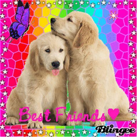 best friend puppies puppies best friends multicolor picture 114334923 blingee
