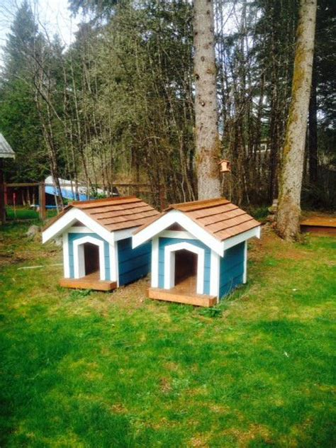 beautiful dog houses beautiful dog houses port alberni alberni mobile