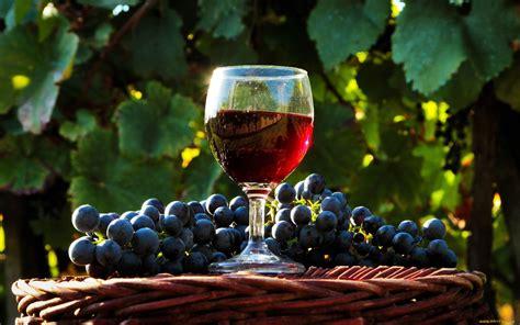 wine drink wallpapers hd desktop  mobile backgrounds