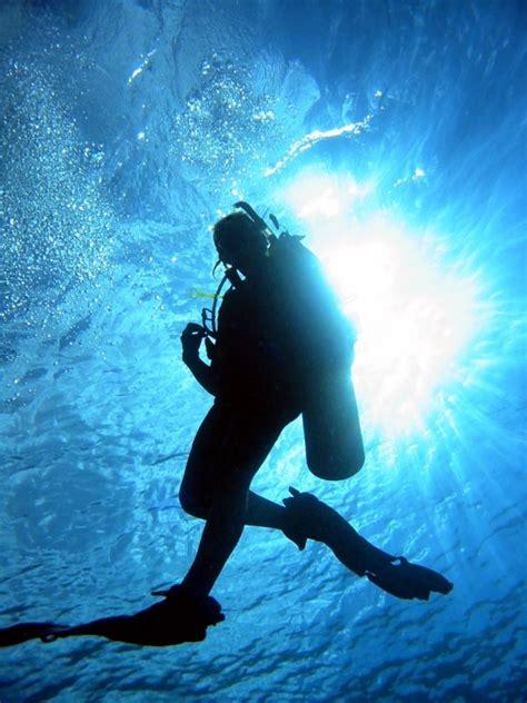 scuba dive learn to scuba dive scuba archery center