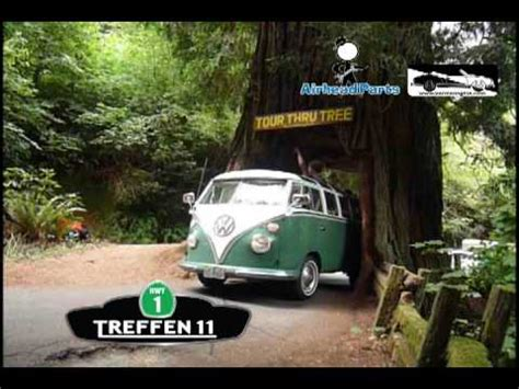air cooled vws drive   redwood tree youtube