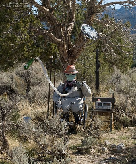 The Watcher In The Pine nevada mcpherson s on the wing photography