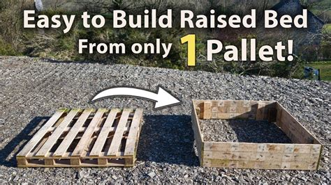 build  raised bed   pallet   easy