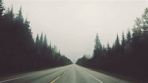 road trip tumblr wallpaper photography landscape trees nature road fog streetscape