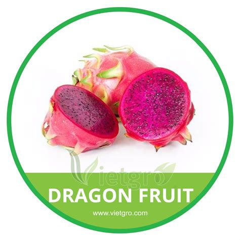 8 fruit products high quality fresh fruit pitaya buy