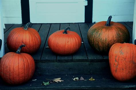 Pumpkins On Porch pumpkins on the porch tomslatin