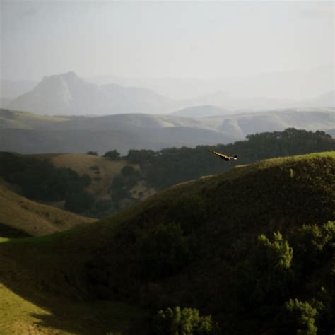 best bed and breakfast in california the best bed and breakfast destinations in california