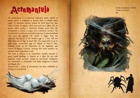 finding in the beast books fantasticbeastsandwheretofindthem deviantart