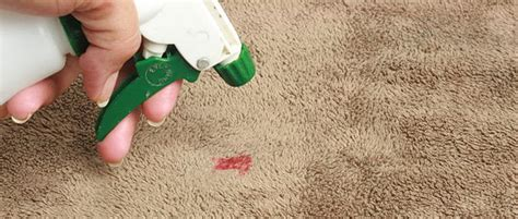 upholstery fabric greensboro nc carpet cleaning greensboro nc by bbc carpet care