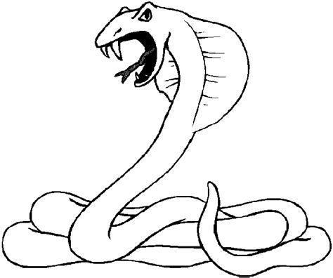 Desert Animals Coloring Pages Coloringpagesabc Com Wildlife Colouring Pages