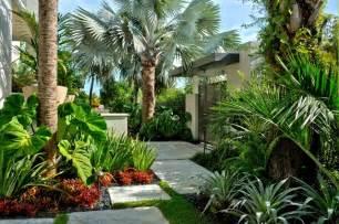Landscape Ground Cover Plants » Home Decoration