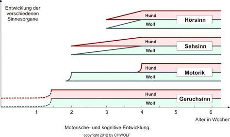 kognitive entwicklung tabelle motorische und kognitive entwicklung chwolf org