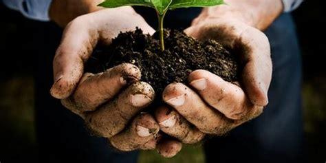 banca della terra terreni da coltivare per i giovani la banca della terra