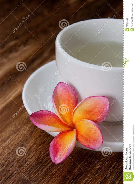 plumeria tea tropical plumeria with green chinese tea royalty free