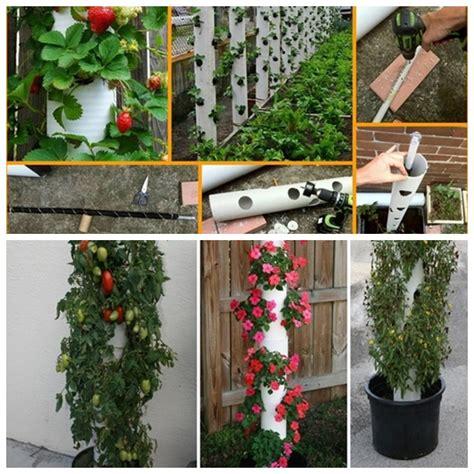 Diy Pvc Planter by Vertical Pvc Planter F Wonderfuldiy